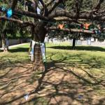 Paderno-BS-parco